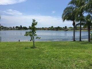 Lakefront Oasis, Port Richey