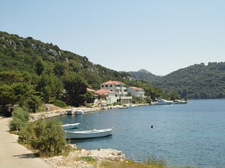 Apartments Livia (studio Blue) island of Lastovo, Pasadur