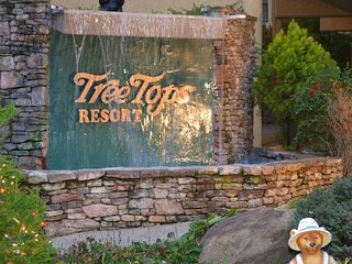 Tree Tops Resort Condominiums beautiful setting, Gatlinburg