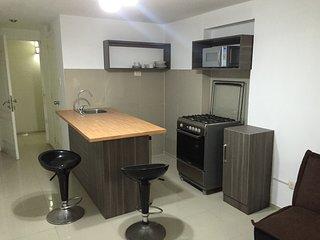 Apartamento estudio de 1 dormitorio (205)