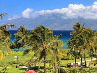 Magnificent! Maui Oceanfront 3BR/3BA