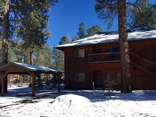 Cozy retreat in the pines!