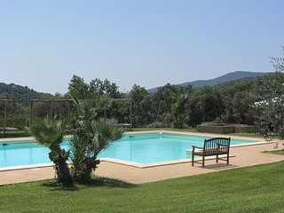 9 bedroom Villa in Sassetta, Tuscany, Italy : ref 5226911