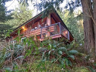 97MF Lakefront Cabin with a Private Dock at Silver Lake, Maple Falls