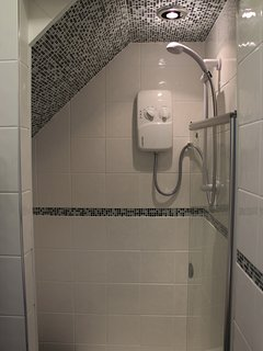 Fully-Electric Shower In Downstairs Bathroom
