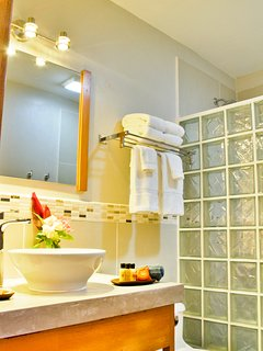Bathroom features vessel sink, hair dryer, walk-in shower with niche and clothes line for wet suits.