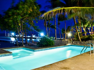 Pool at night with bubble spa.