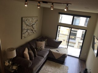 Medical Center Luxury Apartment - All-inclusive, Houston