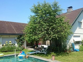 Great Mansion with Swimmingpool, Speedboat and Billard on the Lake of Zurich