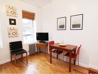 SPACIOUS FURNISHED 1 BATHROOM 1 BEDROOM APARTMENT, New York City