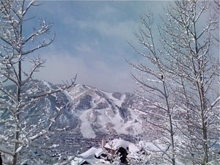 Luxe 3BR Home Unobstructed Views of Town & Aspen