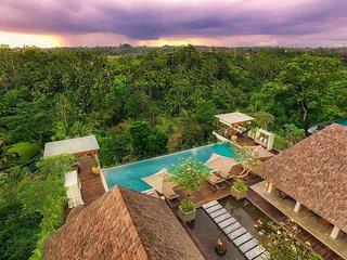 Awesome Luxurius One Bedroom Villa Ubud