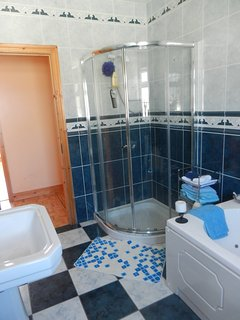 Main Bathroom (Downstairs)
