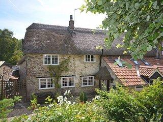 36605 House in Lyme Regis, Cricket Malherbie