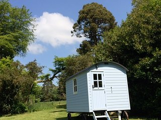 Blue Mountain Shepherds Hut, Borris