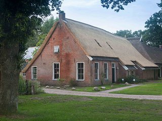 Brinkstee vakantiehuis met sauna en hottub, Norg