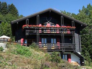 Prachtig gelegen winter en zomer Chalet, 10 pers, Crans-Montana