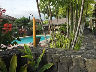Beautiful 2bed/2bath near town with ocean views, Kailua-Kona