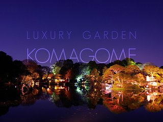 Luxury home now taking bookings for Tokyo 2020 Olympics