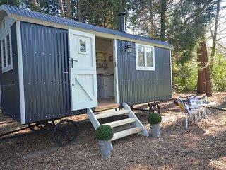 43078 Log Cabin in Cromer, Holt