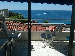Amazing Seaview Flat, Roquebrune-Cap-Martin