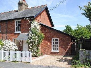 NFL48 Cottage in Lyndhurst, Dibden Purlieu