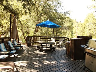 Large deck with propane BBQ, lounge chairs, table & umbrellas