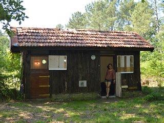Cabane en forêt no 1, Onesse-et-Laharie