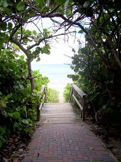 Entrance to the relaxing, tropical beach.
