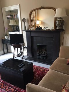 Slate fire place with gas fire.