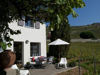 Little house in the vineyards in Rivaz/Chexbres