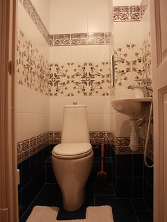 toilet with sanitary shower
