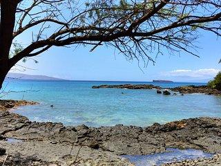Elua Village #1402 - 1 BR Oceanfront