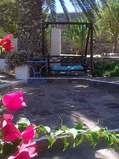 palm tree and swing relaxation spot / backyard
