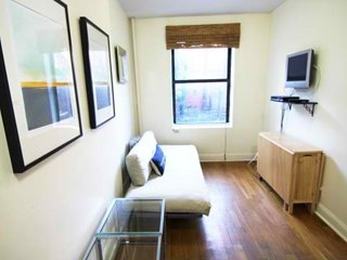 ADORABLE, COZY AND CLEAN 1 BEDROOM, 1 BATHROOM APARTMENT, New York City