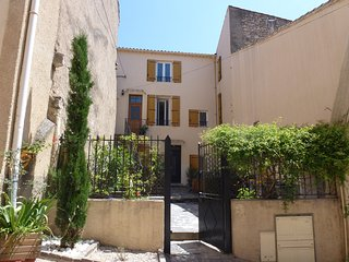 Comfortable Gite 1 in Languedoc Village