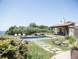 Lush Estate Amid Acres of Vineyards—Designer Décor, Gardens, Pool