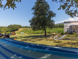 La Fresca - Holidays between Winefileds, Terranuova Bracciolini