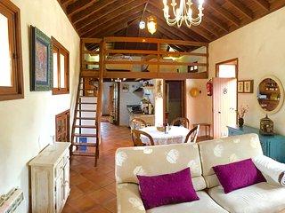 FINCA SANPABLO Tipica casa canaria en piedra y madera ideal para familias/pareja, Icod de los Vinos
