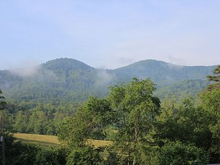 Stunning Mountain View from Fully Updated Cottage, Asheville