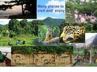 casa y viajes  en la  Amazonia  sur del Peru