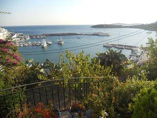 1SG11 Aegean Sea-view house in Batsi, Andros!