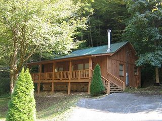 1 Bedroom Streamside Cabin Rental Close to Pigeon Forge Parkway with Hot Tub