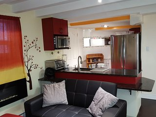 Furnished Clean and Cozy 1 Bedroom Apartment