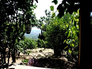 Bagol'Area EcoChalet degli Agrumi