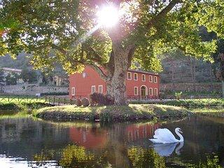 6 bedroom Villa in Badia Cantignano, Tuscany, Italy : ref 5239998