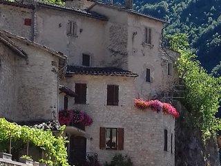 Le Aiuole del Borgo - Primula, Vallo di Nera