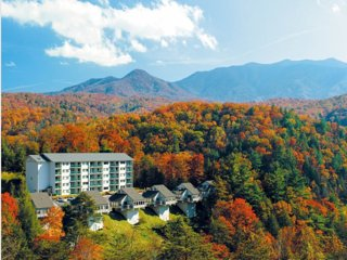 Mountain Loft 1 Bedroom Standard Villa, Gatlinburg