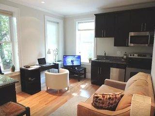 Luxirious 1 Bedroom Apartment, Somerville