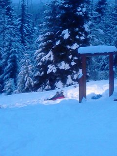 Sled hill leads to cross country ski and or snow shoe trails right off the property